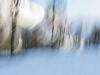 Der erste Schnee 1/25